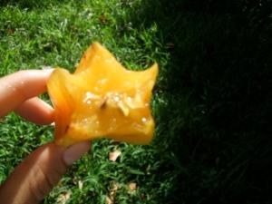 Star Fruit.